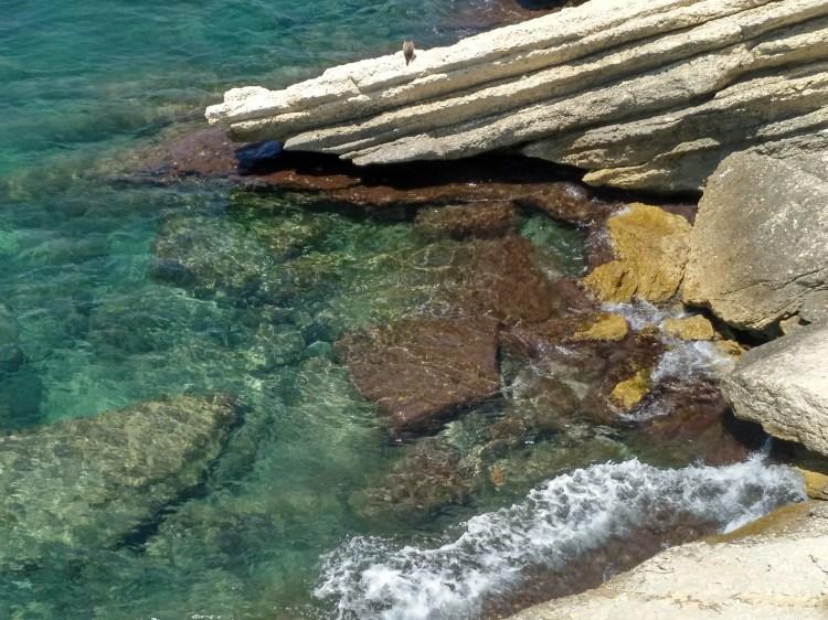 Playa de Levante Arrecife.jpg