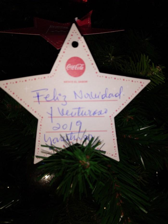 Estrella de navidad.jpg