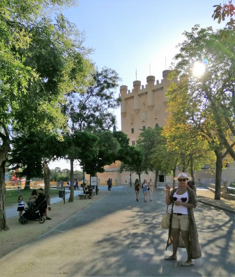 Segovia Castillo de León
